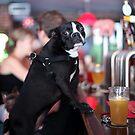 Beer Me by Oliver62