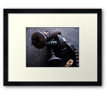 Aged Screws Framed Print