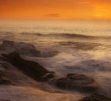 Misty Seas by Barbara  Brown