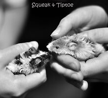 Squeak & Tiptoe by Bianca Turner