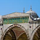Turkish Mosque by Michael D'Andrea Diaz