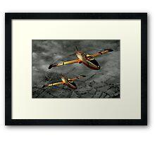 Aermacchi in Flight Framed Print