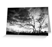 San Jacinto (Desert Sunset) Greeting Card