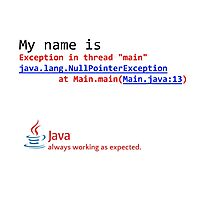 Java, always working as expected. Photographic Print