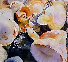 Treasures from the Sea by Ruth S Harris