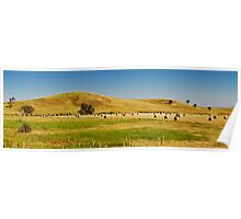 Country Side Hay Bales Panorama 02 Poster