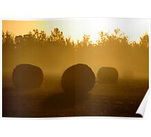 Rolls of gold Poster