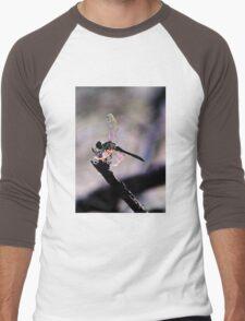 Dragonfly Wings Men's Baseball ¾ T-Shirt