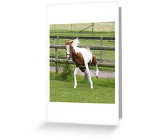 Crazy Legs in action Greeting Card