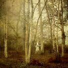 Spirit of the Woods by Nicola Smith