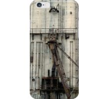 Historically Buffalo iPhone Case/Skin
