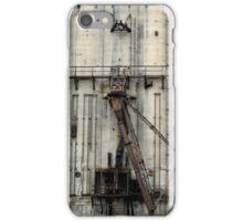 Historically Buffalo iPhone Case/Skin