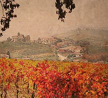 Vineyard's colors by becks78
