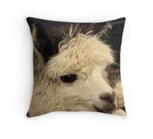 Sweetness Alpacafied Throw Pillow