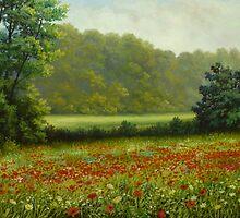 poppies field by edisandu