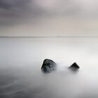 Remnant by Grant Glendinning