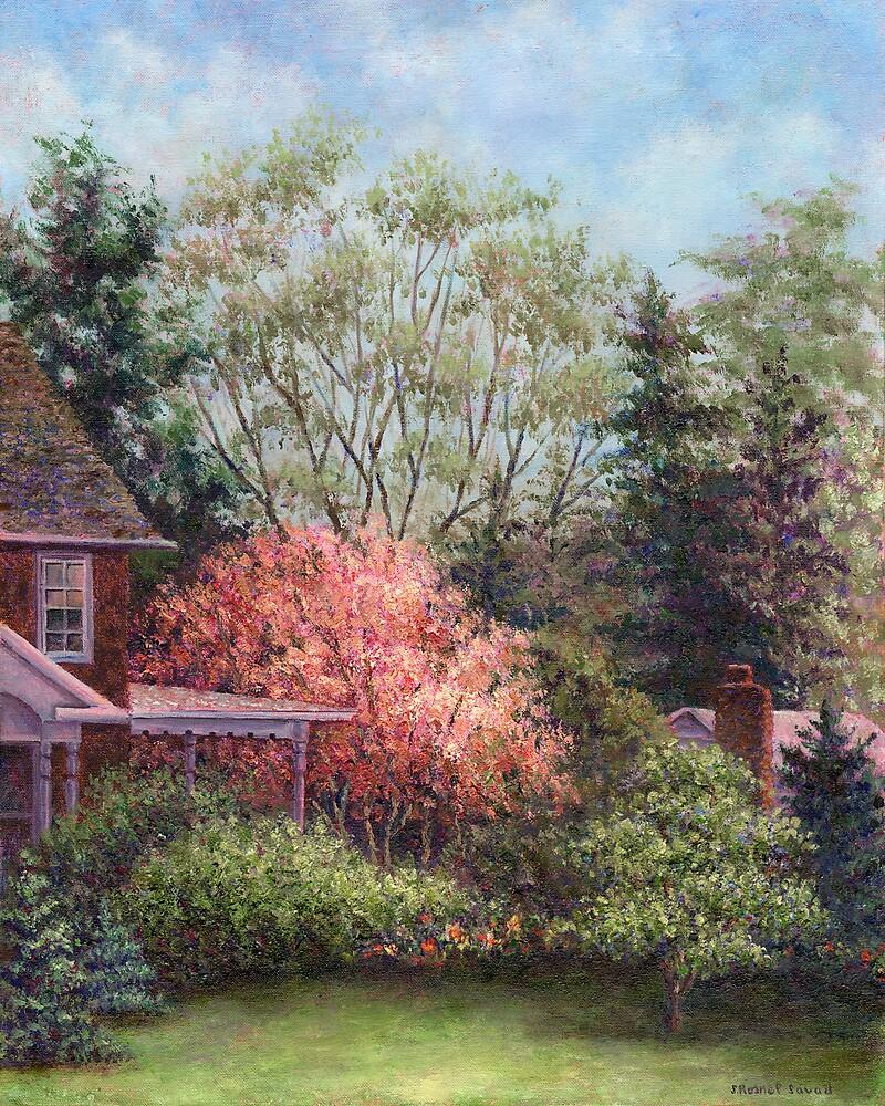 Magnolia by Susan Savad