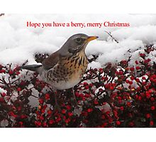 Berry, Merry Christmas Photographic Print