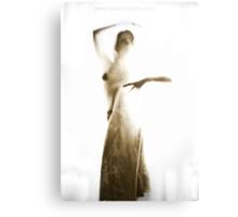 Ballerina (see through me series) Metal Print