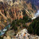 The Gorge - Yellowstone by Vivek Bakshi