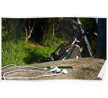 iPod & Bike Poster