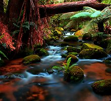 Cuckoo Falls, small cascades by Husky