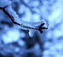 Ice by JM-Photography