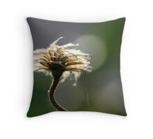 Clematis seedhead against the light  Throw Pillow