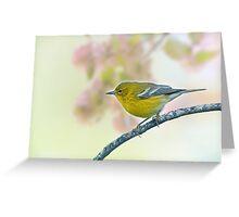 Tiny Pine Warbler Greeting Card