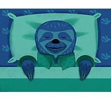 Sleeping Sloth Photographic Print