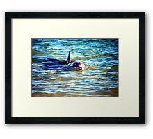 The Dolphin  Framed Print