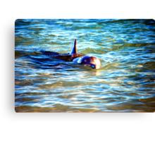 The Dolphin  Canvas Print