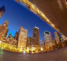 a fisheye view of the Chicago skyline by Sven Brogren