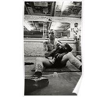 Doting Boxer Poster