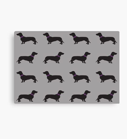 Black Sausage Dogs Pink Collar Canvas Print