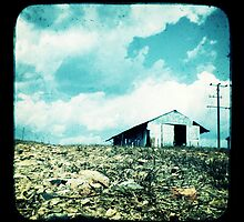 The Old Tin Shed by Jules Campbell