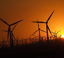 Sunset at the wind farm by davidleahy
