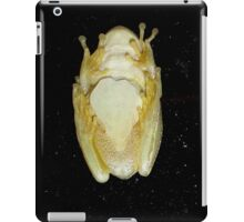 Underbelly The Soft Underside or Abdomen Of A Tree Frog. iPad Case/Skin