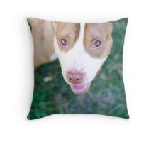 pit bull gaze Throw Pillow