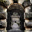 """""""Gated Entrance"""" by Bradley Shawn  Rabon"""