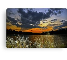 Among the Wildflowers Canvas Print