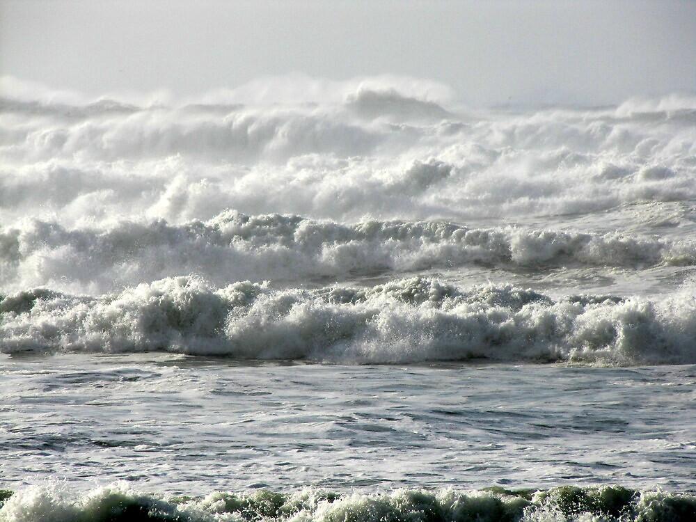 November High Surf by Beth Johnston