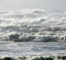 November High Surf by Beth Johnston