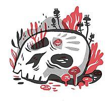Skull Garden Photographic Print