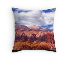 Lone Ocotillo on a Baja Road Throw Pillow