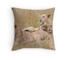 Lion Pride Reunion Throw Pillow