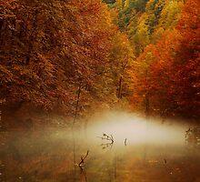 autumn mist by Stankina