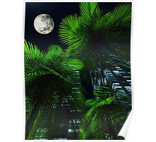 City Nights Poster