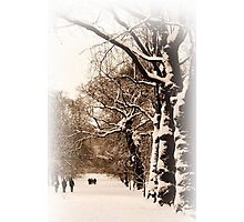 Trees in Sepia - Greenwich Park Photographic Print