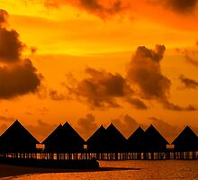 Golden Sunset in the Maldives by Digital Editor .